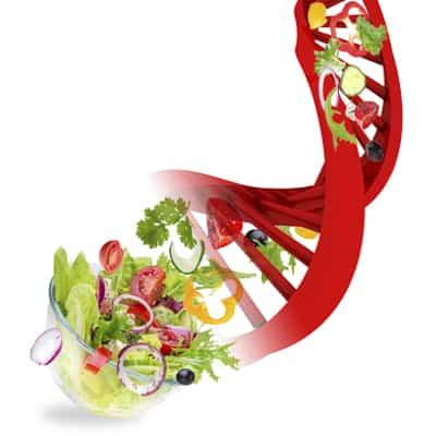 ENTENDENDO A GENÉTICA DA NUTRIÇÃO